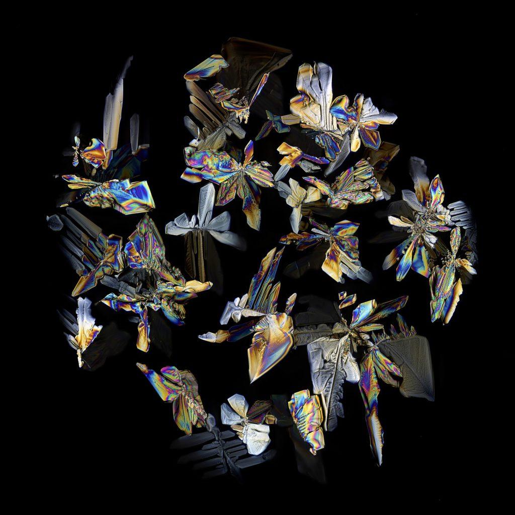 Sugar crystals imaged using polarized microscopy.