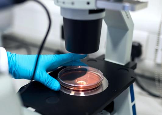 Microscope Preventative Maintenance inspection, woman inspecting microscope